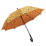 ankara umbrella